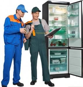 работа холодильщиком