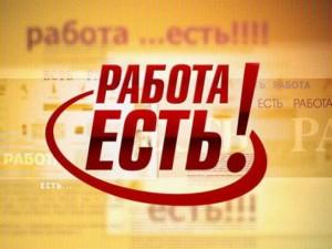В Новосибирске увеличилось количество вакансий